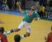 Handball : l'Algérie organisera la CAN-2024 et la Coupe d'Afrique des clubs en 2020