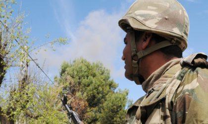 Lutte antiterroriste : deux bombes artisanales détruites à Tébessa