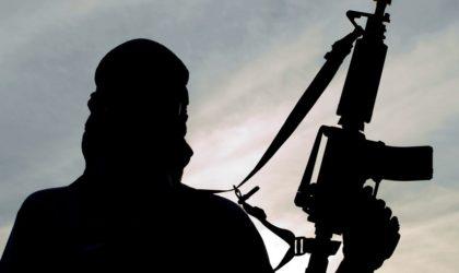 Contribution – Pourquoi Al-Qaïda et Daech ne s'attaquent jamais à Israël ?