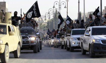 Comment l'Occident a multiplié le nombre de terroristes par 4 en 20 ans