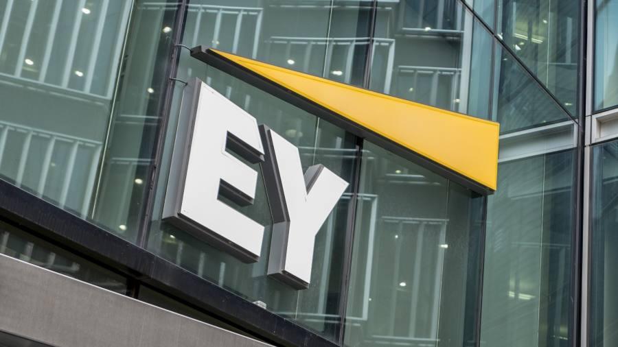 Ernst&Young, Audit