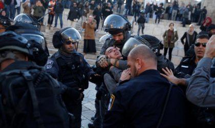 Proche-Orient : 183 Palestiniens arrêtés par l'occupant israélien en cinq jours