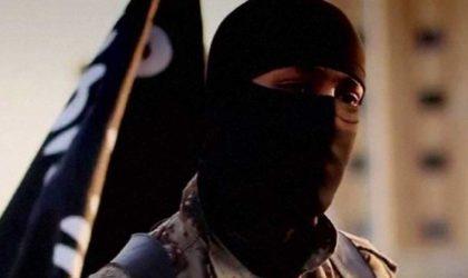 Recul de la violence terroriste dans le monde : Daech est-il vaincu ?