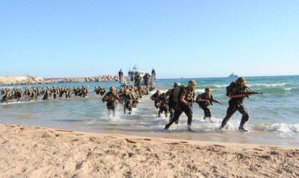 Gaspillage ou rentabilisation de l'usage stratégique de nos moyens militaires ?