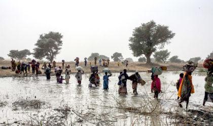 Nigeria : 30 000 personnes fuient la ville de Rann à cause de Boko Haram