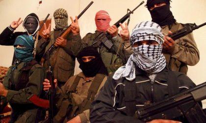 Miliciens syriens et anciens soldats au Sahel convergent vers l'Algérie
