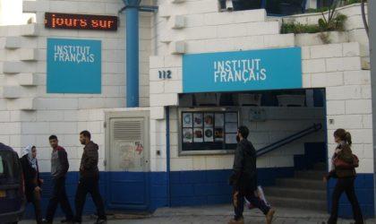 L'IFA lance un appel pour le financement de projets culturels