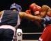 Championnat arabe de boxe : sept médailles dont 3 en or pour l'Algérie