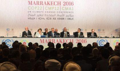 Une association risque la dissolution pour avoir participé à la COP22