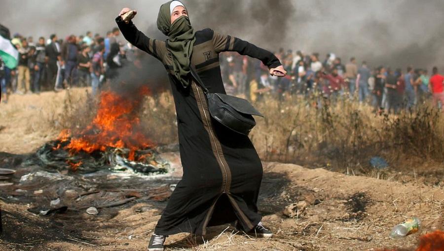 Palestine guerres