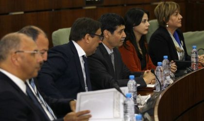Contribution de Bachir Medjahed – Pourquoi nos ministres sont apolitiques