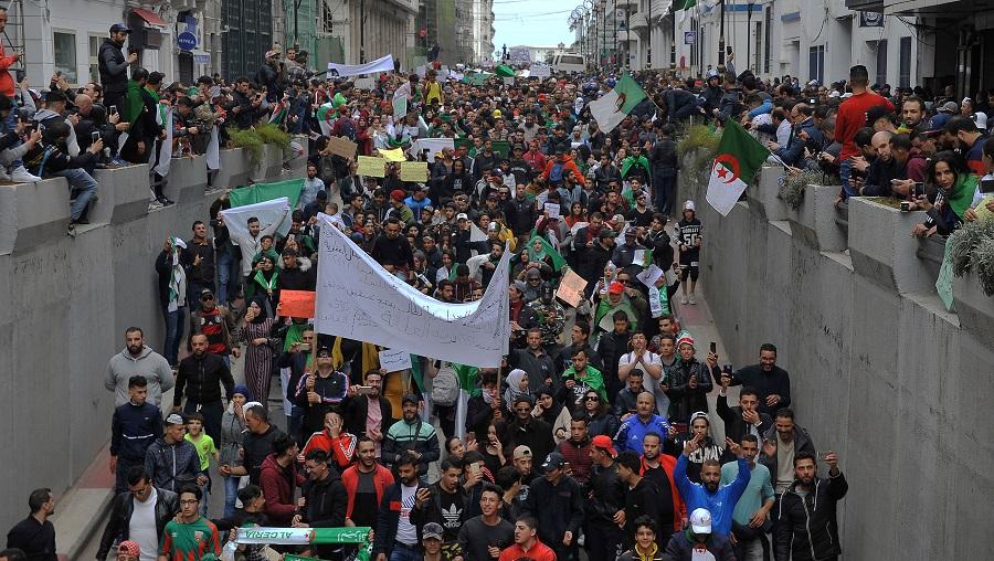 Alger manifestations