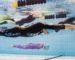 Sig : premier championnat d'Algérie d'apnée sportive indoor les 26 et 27 avril