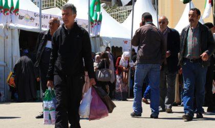 Environnement : l'Algérie consomme 7 milliards de sacs en plastique par an