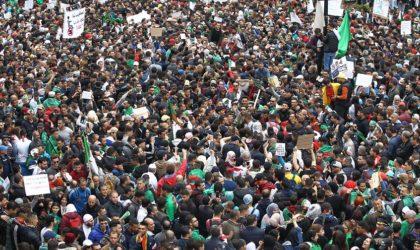 Vivre ensemble en paix : des valeurs incarnées par le peuple algérien