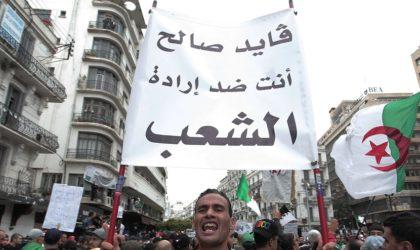 Le «rinforzando» contestataire algérien