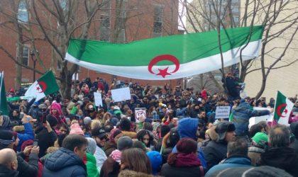 Les Algériens du Canada demandent à Trudeau de traquer l'argent sale algérien