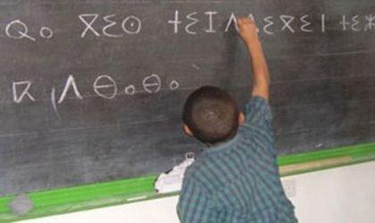 Promotion de tamazight : édition d'un glossaire en variante «tachelhit»
