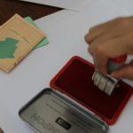 vote Conseil constitutionnel