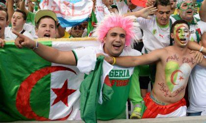 Le public algérien en Egypte efface la mauvaise image de «trouble-fête»