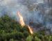 Tizi-Ouzou : les incendies sur le littoral sont d'«origine volontaire»