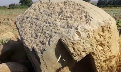 Chlef : classement de sept sites et monuments archéologiques au patrimoine national