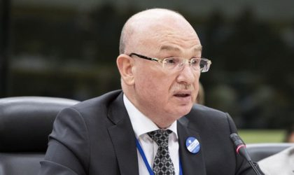 Selon Al-Araby : le pouvoir mise sur un diplomate pour renforcer les «lièvres»
