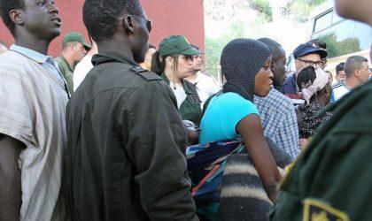 Migrants : les quatre raisons du refus algérien selon une étude italienne