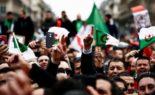 55e vendredi : une marée humaine à Alger