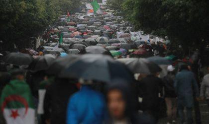 39e marche pour le changement : un déluge humain sous une pluie diluvienne