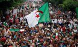 Alger aujourd'hui : sans commentaire