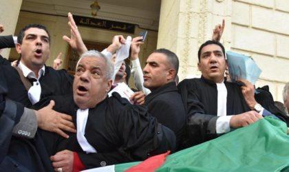Maître Sellini humilie les magistrats : «Votre justice est une basse-cour !»