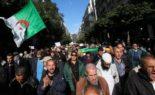51e vendredi de manifestation à Alger