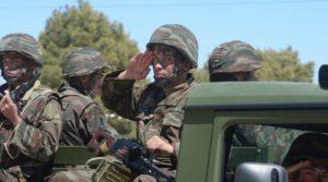 Carnegie armée algérienne Constitution