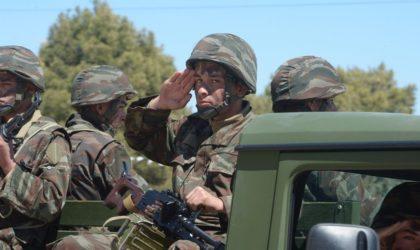 Le centre Carnegie : «L'armée algérienne aurait dû intervenir en Libye en 2011»