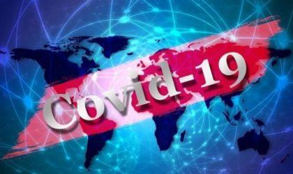 Pandémie du coronavirus : 573 091 décès dans le monde