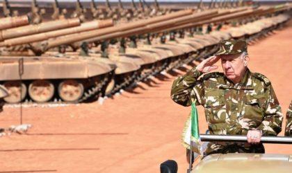 Les armées turque et égyptienne bientôt en Libye : l'ANP doit-elle intervenir ?
