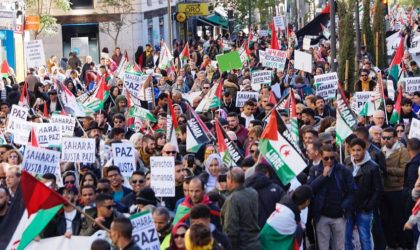 Espagne : imposante manifestation de soutien au peuple sahraoui à Séville