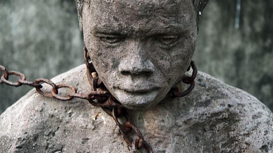 esclave champ culturel