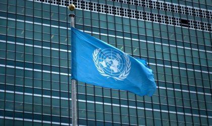 Contribution de Mohsen Abdelmoumen – Lettre ouverte à Madame l'ONU !