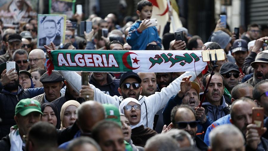 Alger Nida 22