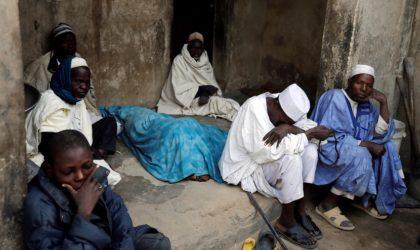 Les Nigériens se joignent aux Algériens et dénoncent la libération de terroristes