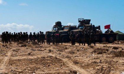 Comment le Maroc est tombé dans le piège tendu par Ben Zayed à Guergarate