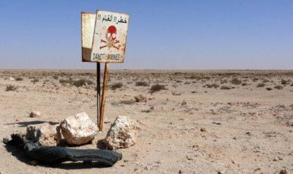 Sahara Occidental : l'implantation de milliers de mines fera des milliers de victimes