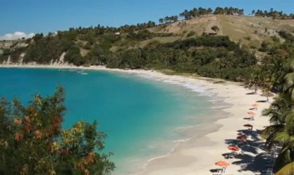 Deux siècles après : Haïti redevient le pays le plus peuplé de la Caraïbe