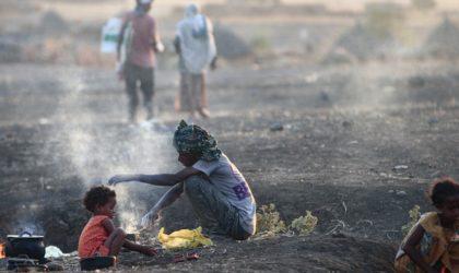 Ethiopie : la famine menace 350 000 personnes au Tigré