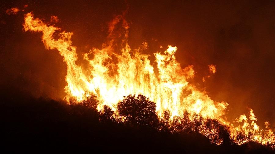 incendies forêts