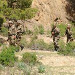 forces de l'ANP terroristes