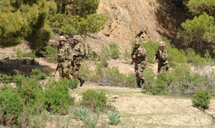 Quatre terroristes éliminés et deux militaires tués à Tipasa