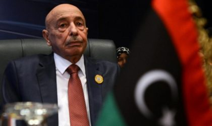 Election du Conseil présidentiel intérimaire libyen : la liste des candidats connue